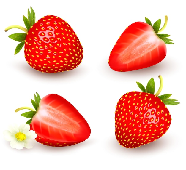新鮮なイチゴのセット。ベクトルイラスト。