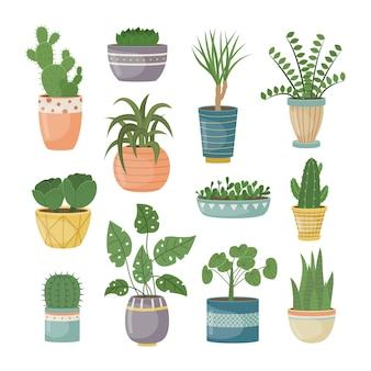 Набор домашних растений в горшках. декоративные растения в интерьере дома. плоский стиль.