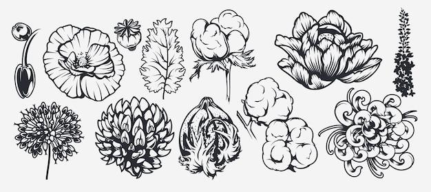 花をテーマにしたイラストのセット。デザイン、背景、装飾、布地への印刷、その他多くの用途の要素として使用できます