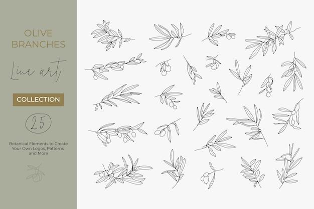 モダンなリニアミニマルスタイルのオリーブの枝のセット。果物や葉のある枝のベクトルイラスト
