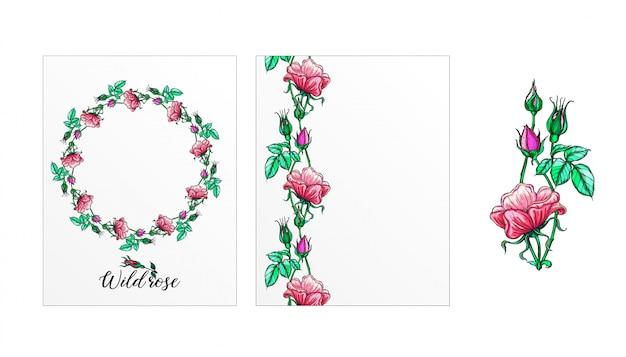 バラの花のポストカードのセット。ピンクの花。ローズ。