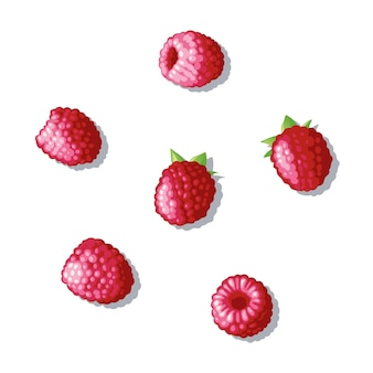 Набор малины. по поверхности рассыпалась ягода. малина под разными углами. иллюстрация