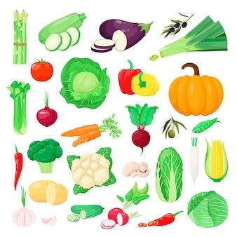 白い背景の上の野菜のセット。漫画のスタイル。