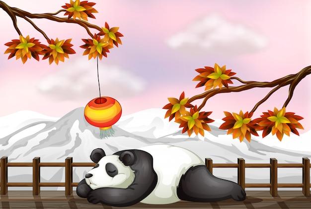 眠っている熊と雪山