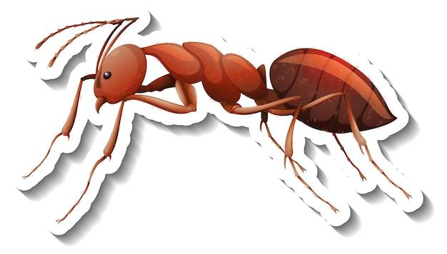 Шаблон наклейки с крупным планом красного муравья изолированы