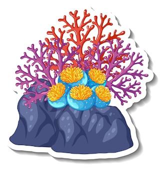 고립 된 산호 바다 요소와 스티커 템플릿