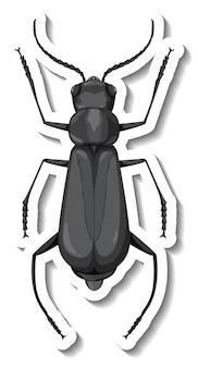 고립 된 메뚜기의 평면도와 스티커 템플릿