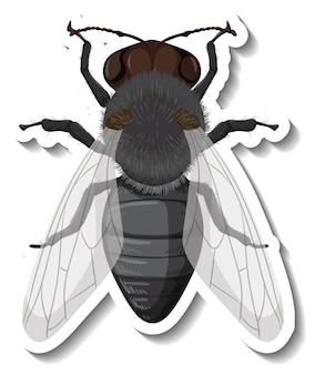 Шаблон стикера с видом сверху изолированной мухи