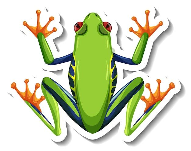 고립 된 녹색 개구리의 상위 뷰와 스티커 템플릿