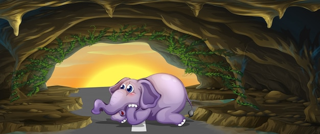 道路の真ん中にある恐怖の象