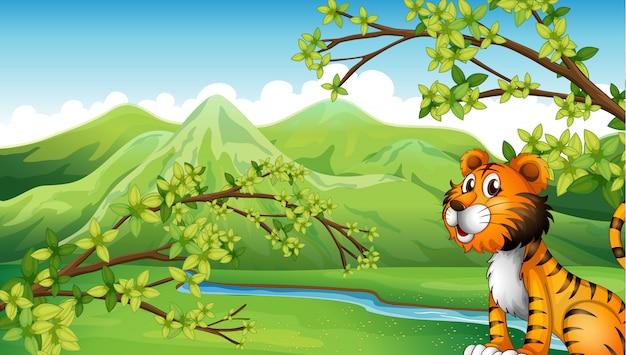 Тигр в горном пейзаже