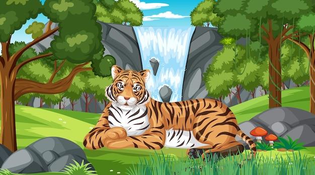 Тигр в лесу или сцена тропического леса с множеством деревьев