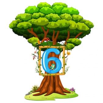 白い背景の上の6の数字を持つ木