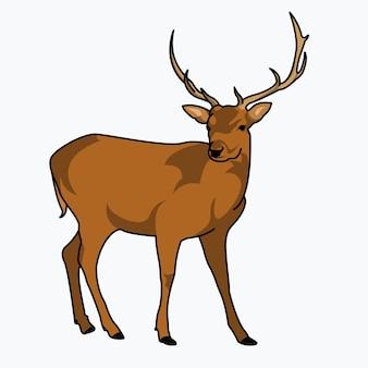非常に詳細な大人の鹿のイラストデザイン