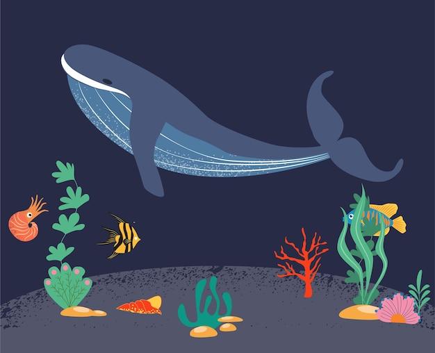 고래가 바다 밑에서 헤엄치고 있다 해양 세계의 주민들 귀여운 수중