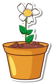 냄비에 흰 풀꽃 스티커