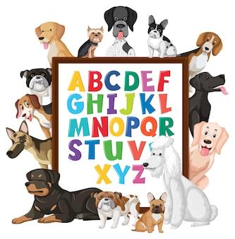 다양한 종류의 개가있는 az 알파벳 보드