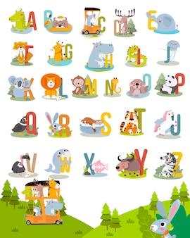 Животное алфавит графика от a до z. симпатичные вектор зоопарк алфавит с животными в мультяшном стиле.