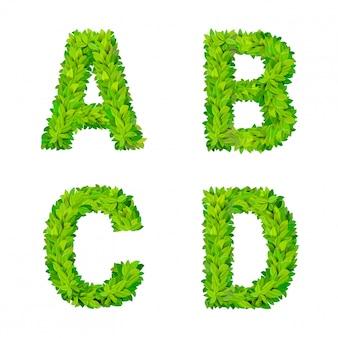 Abcの草の葉文字数要素現代の自然プラカードレタリング緑豊かな葉の落葉性セット。 abcd葉は葉状の葉状の自然な手紙ラテン英語アルファベットフォントコレクションを葉しました。