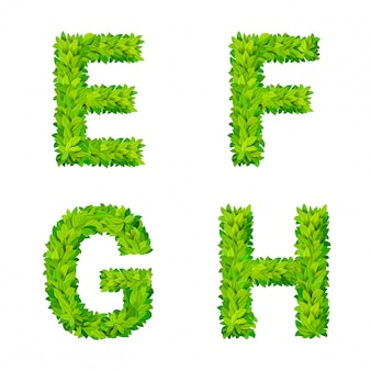 Abc grass leaves letter number elements modern nature placard lettering leafy foliar deciduous   set. e f g h leaf leafed foliated natural letters latin english alphabet font collection.