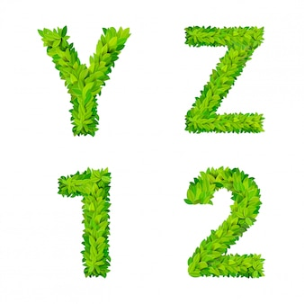 Abc grass leaves letter number elements modern nature placard lettering leafy foliar deciduous   set. y z 1 2 leaf leafed foliated natural letters latin english alphabet font collection.