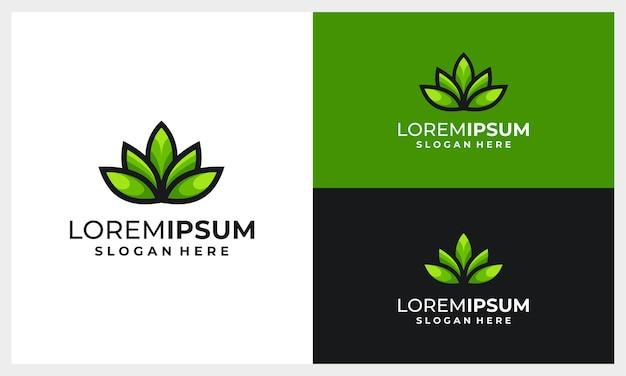 Абстрактный и современный лист или листья шаблон дизайна логотипа