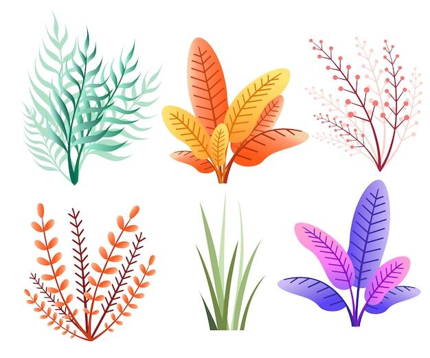 초록 가을 컬렉션. 식물 꽃 아이콘입니다. 흰색 배경에 그림