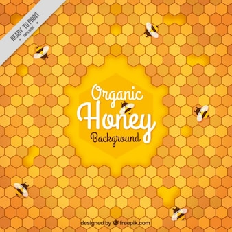 Abstract background of honeycomb