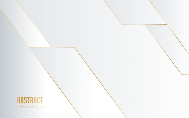 Abstract background white and grey color with line golden color.