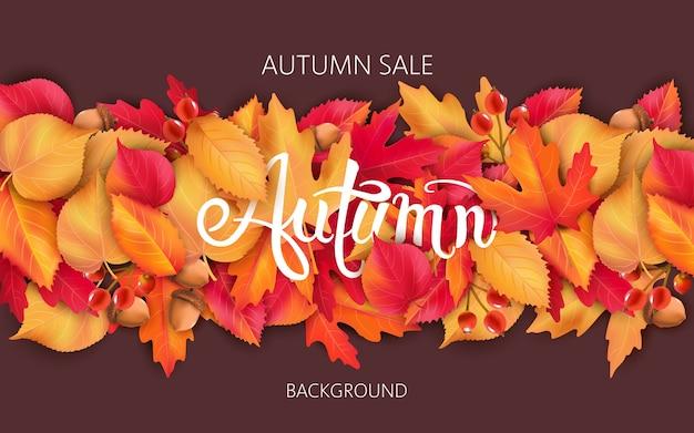 잎, 도토리, 열매와 추상적 인 배경입니다. 가을 세일