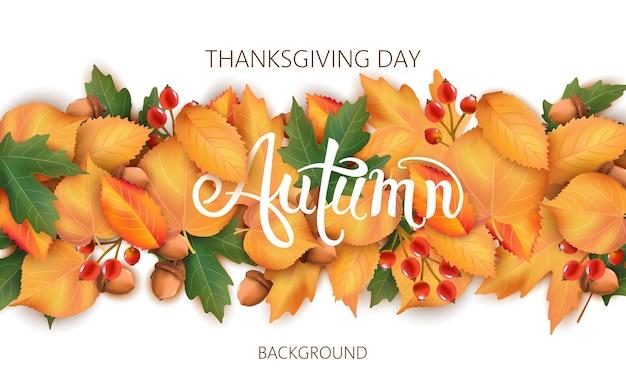 葉、どんぐり、ベリーと抽象的な背景。秋のテーマ。感謝祭の日