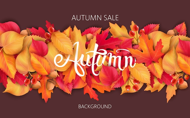 Abstract background with leaves, acorns and berries. autumnal sale