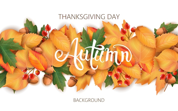 Abstract background with leaves, acorns and berries. autumnal thematics. thanksgiving day Premium Vector