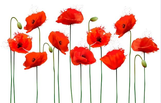 빨간 양 귀 비 꽃과 추상적인 배경입니다. 벡터.