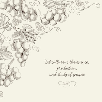 Abstract berry light  with bunches of grapes and inscription in hand drawn style