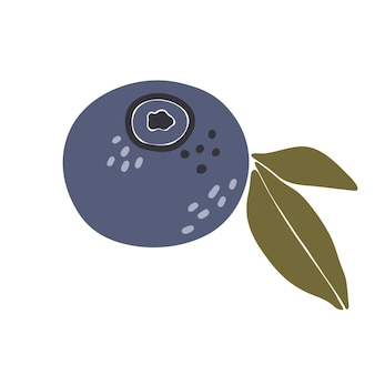 Abstract blueberry fruit illustration