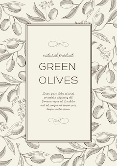 Abstract botanical natural poster with text in rectangle frame and olive branches in engraving style