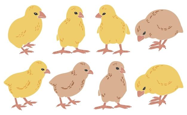 抽象的な鶏のシルエットセット