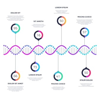Abstract dna molecule  business infographic with options