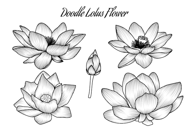 Abstract doodle shading lotus flower monochrome vintage retro wedding invitation ornament decoration