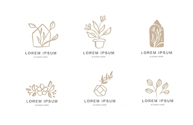Abstract floral logo templates set