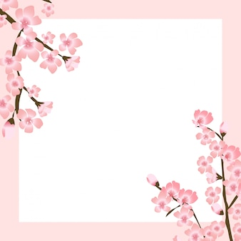 Abstract floral sakura flower japanese natural background