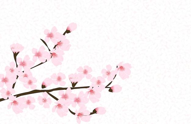Abstract floral sakura flower japanese natural background