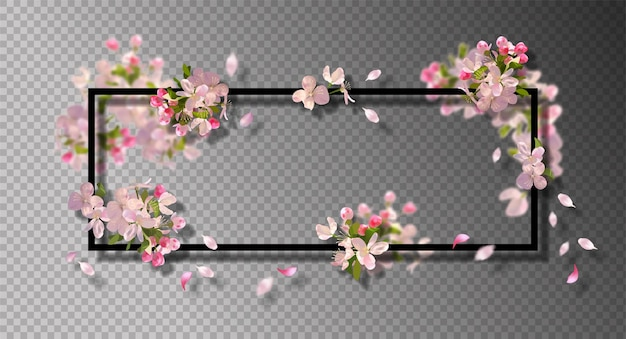 Abstract frame with with spring cherry blossom and falling petals