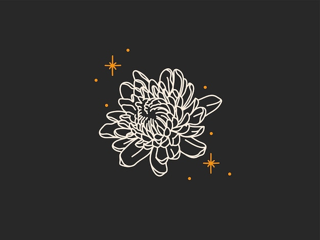 Abstract graphic illustration with logo elements, magic line art of peony flower and stars