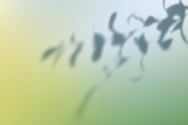 잎 그림자와 추상 녹색 그라데이션 배경 벡터