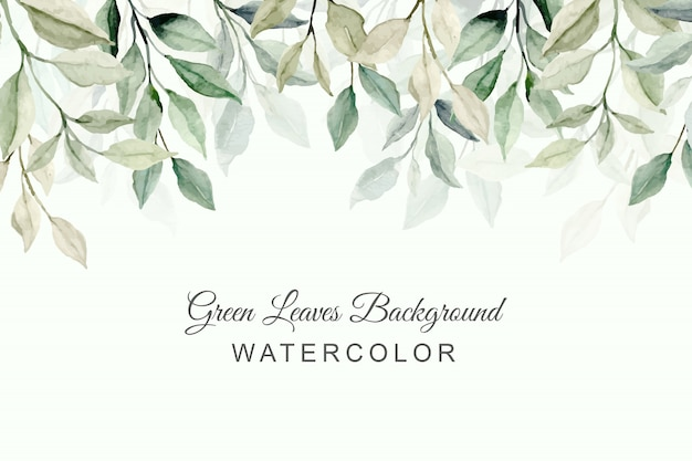 Abstract green leaves watercolor background Premium Vector