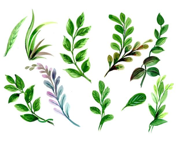 추상 녹색 수채화 잎 세트 디자인