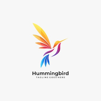 Abstract humming bird colorful logo.
