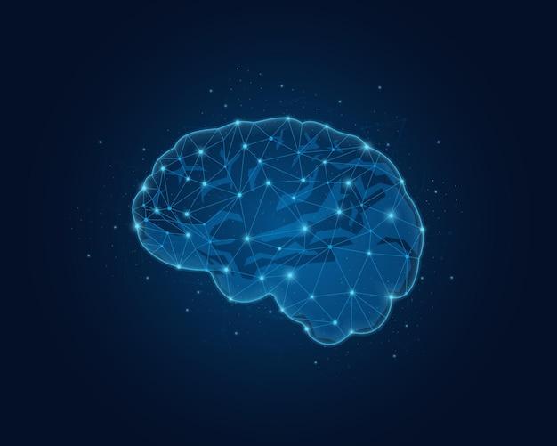 인간 두뇌의 추상 낮은 폴리 뇌 다각형 와이어 프레임 그림 선과 점 벡터 일러스트와 함께 다각형 와이어 프레임 그림